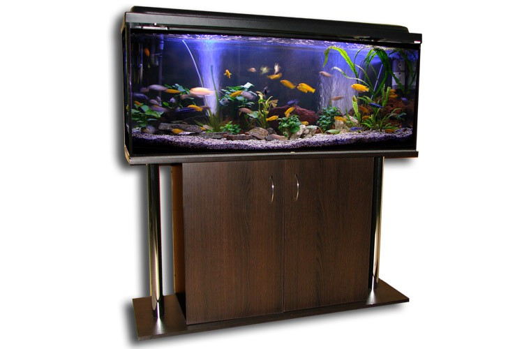 Aquarium kombination 120x40x50 cm 240 liter mahagoni for Aquarium 120x40x50
